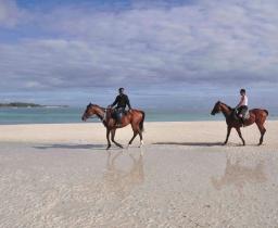 Možnost jízdy na koni po pláži